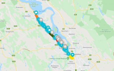 Have Your Say – West Tamar Highway