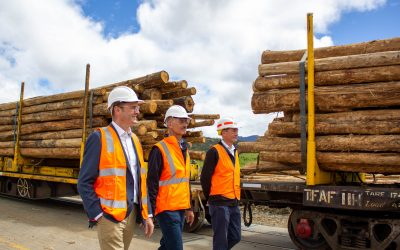 State Budget – Boosting jobs and investing in forestry infrastructure
